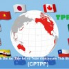 CPTPP benefits Vietnam's industrial property