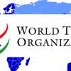 DG Azevêdo stresses need for inclusiveness, transparency and flexibility in WTO talks