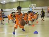 Quy định tập huấn chuyên môn với người hướng dẫn tập luyện thể thao