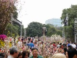 Hàng nghìn người đổ về Lễ hội hoa anh đào Nhật Bản – Hà Nội 2019