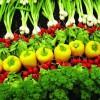 Làm sao để đưa nông sản Việt vào chuỗi cung ứng lớn?
