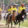 Quy định về tổ chức hoạt động đua ngựa để kinh doanh đặt cược.
