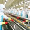 Hoa Kỳ: Thị trường xuất khẩu nhiều tiềm năng và không ít thách thức