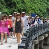 Triển khai quản lý Hướng dẫn viên du lịch theo quy định của Luật Du lịch năm 2017